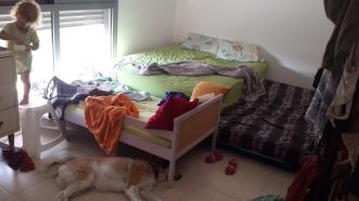 מיטת מעבר ביקנעם